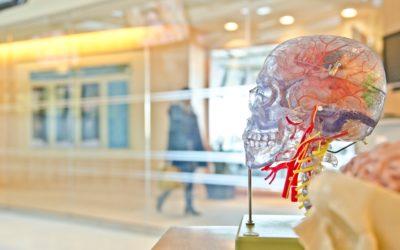 Rewire Your Brain in 2019