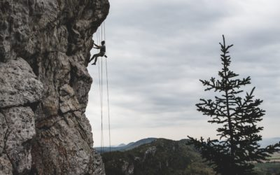 The Science of Grit and Resilience