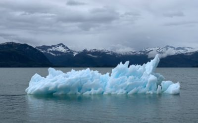Understanding Climate Change and Holding on to Hope