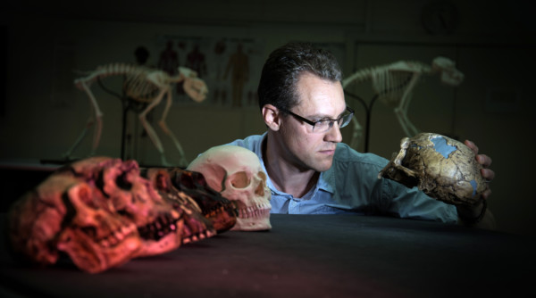 What We Know About Human Evolution (and the Mysteries that Remain)