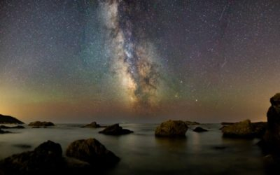 Is the Universe Purposeful?