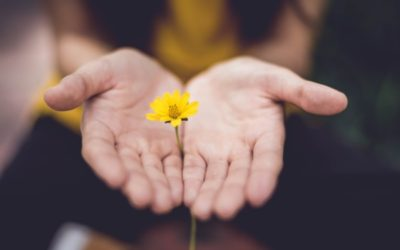 What We Know about Forgiveness